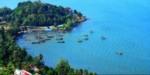 Kinh nghiệm đi du lịch ở đảo Hải Giang Quy Nhơn