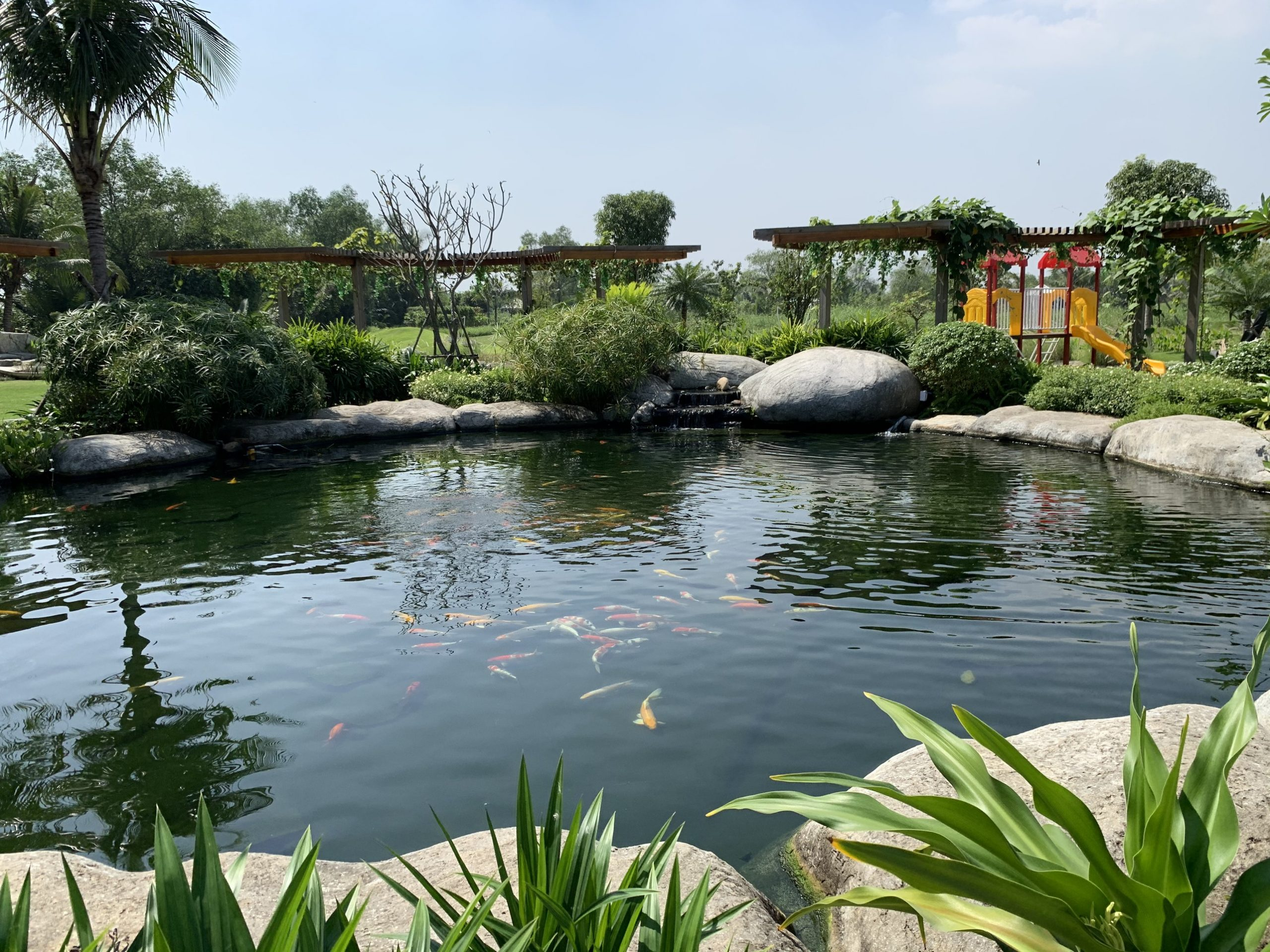 Mua bán - ký gửi - nhà vườn - đất vườn - sang nhượng - cho thuê - sông đồng nai,đất vườn - nhà vườn - long phước