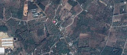 farm hill - đất vườn Xuân Lộc - đất nền Xuân Lộc - nhà vườn Xuân Lộc - Đồng Nai