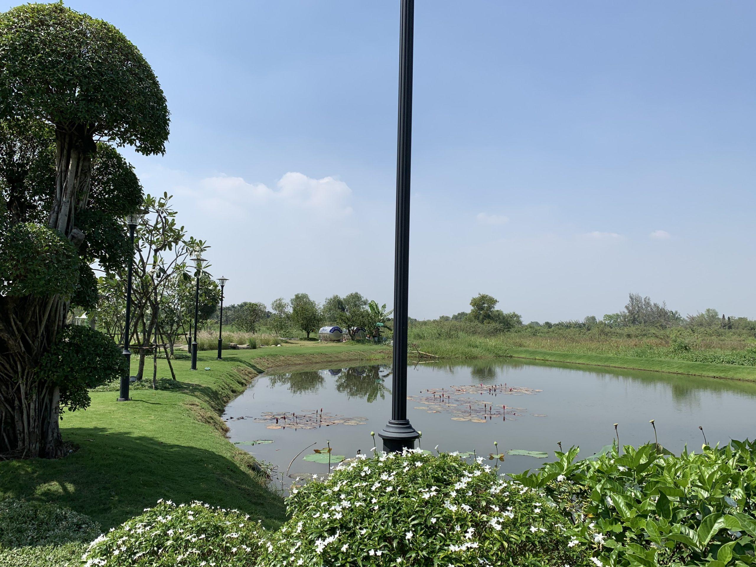 Bán đất vườn - trồng cây lâu năm - đất thổ cư - nhà vườn - biệt thự - đất nền - đất sông - đất sào - đất dự án - Long Phước