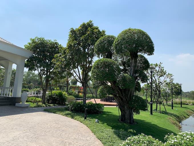 Nhà vườn là gì? Đất vườn là gì? Biệt thự nhà vườn là gì? đất thổ vườn là gì ? Quy định sử dụng đất , Phân biệt đất vườn các loại đất khác.
